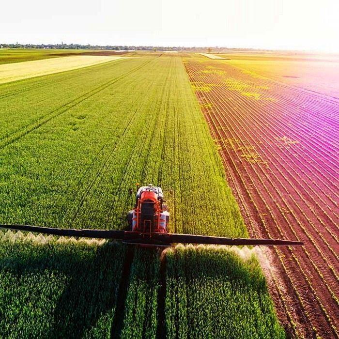 Зображення. Курс 1С:Підприємство. Бухгалтерія сільськогосподарського підприємство